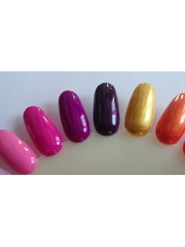 Fucsia Gel Paint 5 ml