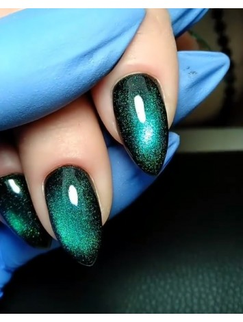 Kodi 5d gel polish №05