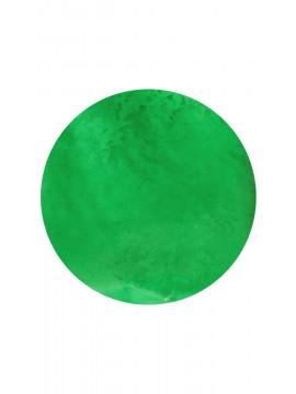 Green  Neon pigment ,5g