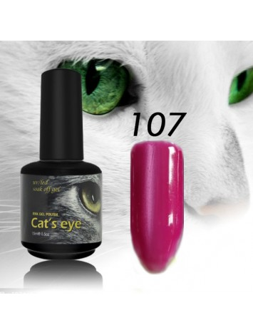 RNK Cat eye Gel Polish №107, 15 ml