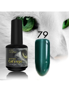 RNK Cat eye Gel Polish №79, 15 ml