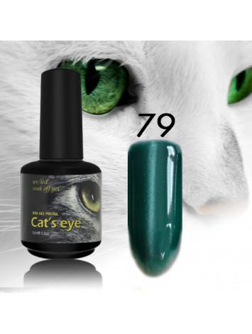 RNK Cat eye Gel Polish №79, 15 ml